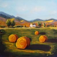 Farm, September Morning