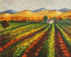Vineyard, Napa