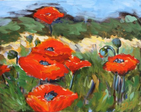 Poppies on the loose