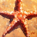 Orange star, Oil on canvas 6 x 6""