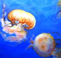 Floating Jellies, Oil on Canvas, 20 x 20""