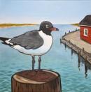 Laughing Gull III, 12 x 12 Acrylic $130