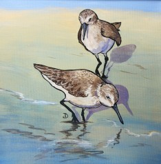 SOLD Sandpipers Duet 12 x 12 Acrylic