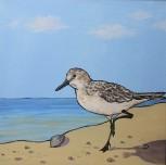 Sandpiper, 12 x 12 Acrylic $150