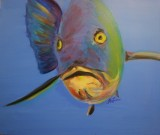 SOLD Snapper, Oil on Canvas, 24 x 24 $350