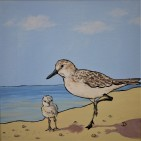 SOLD Sandpiper and Chick, 12x12, Acrylic $150 framed