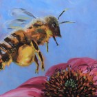 The Pollinator: European Honeybee, 12 x 12, Acrylic SOLD
