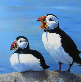 Puffin Pair: Atlantic Puffin, 24 x 24, Mixed Media