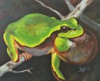 Night Chorus: Pine Barrens Tree Frog, 16 x 20, Acrylic