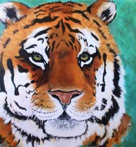 Rocky: Amur Tiger, 36 x 36, Acrylic